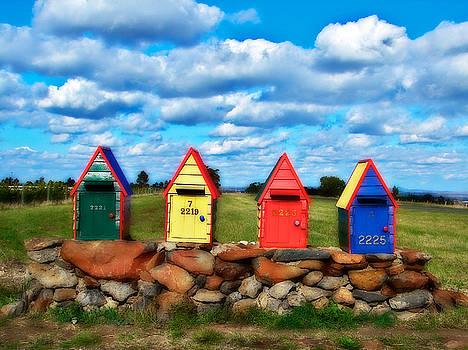 Aussie Mail Box by Kathryn Potempski
