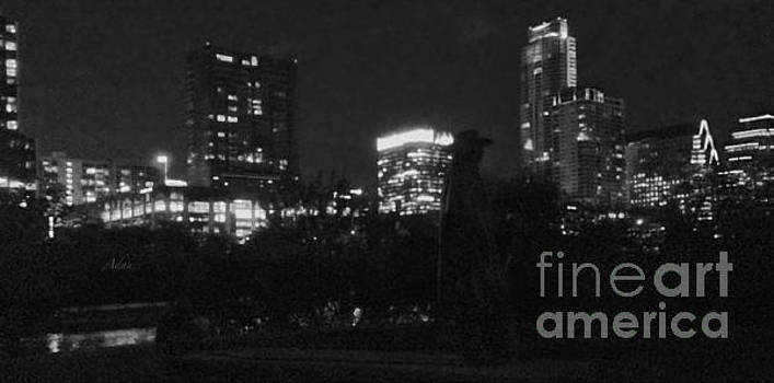 Felipe Adan Lerma - Austin Hike And Bike Trail - SRV Gritty Austin Night Panorama
