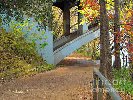 Felipe Adan Lerma - Austin Hike And Bike Trail - Under Lamar Street Bridge - Fall Colors