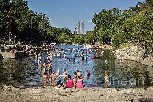 Herronstock Prints - Austinites love to lounge in the refreshing waters of Barton Spr