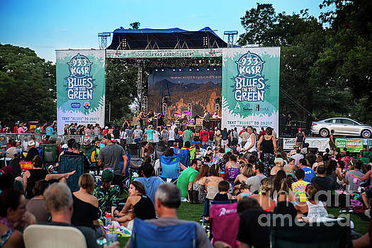 Herronstock Prints - Austins Blues on the Green free summer concert series in Zilker Park attract thousands