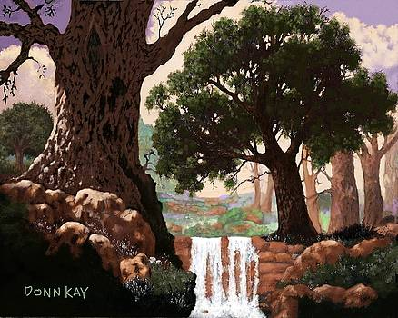 Austin's Hill Country Falls by Donn Kay