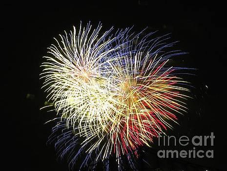 Australian Fireworks in Montreal 02 by Ausra Huntington nee Paulauskaite