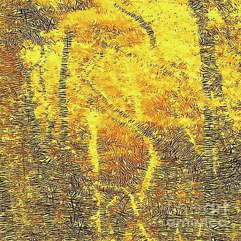 Tim Richards - Dreamtime Forest