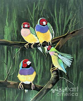 Australian Gouldian Finches by Audrey Russill