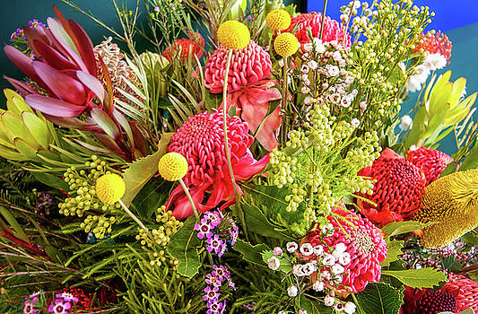 Australian Native flowers display by Daniela Constantinescu