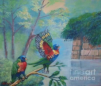 Australian rainbow parrots by Jean Pierre Bergoeing
