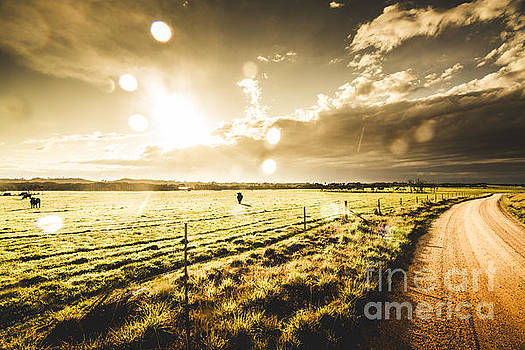Australian rural dirt road  by Jorgo Photography - Wall Art Gallery