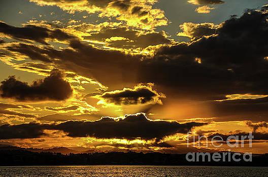 Australian Sunset by Barbara Dudzinska