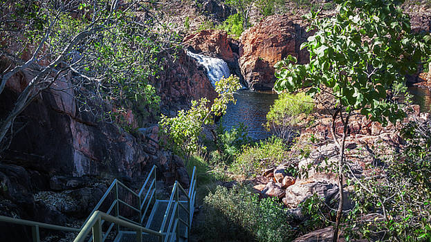 Australian wilderness at Edith Falls  by Daniela Constantinescu