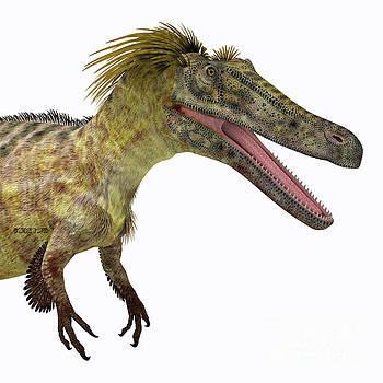 Corey Ford - Austroraptor Dinosaur Head