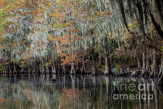 Autum at The Riverside by Iris Greenwell