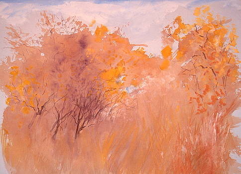 Autum in Toscany Italy by HGW Schmidt