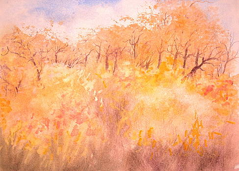 Autum in Toscany Italy I by HGW Schmidt