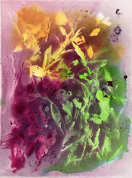 Dawn Marie Black - Autumn Abstract