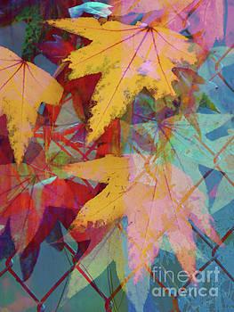 Autumn Abstract by Robert Ball