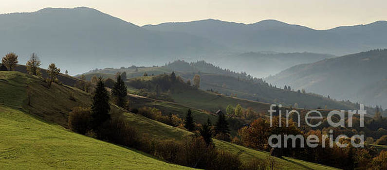 Autumn Afternoon In A Mountain Meadow by Michael Lesiv