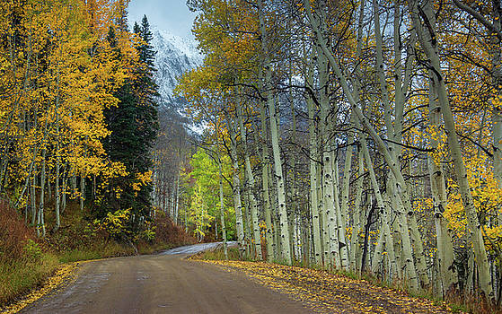 John De Bord - Autumn Along Gothic Road