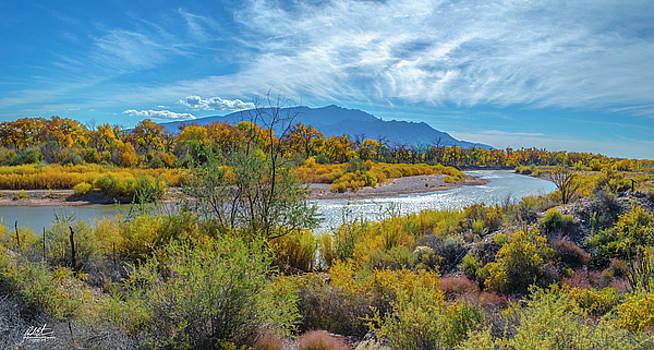 Autumn Along Rio Grande by Richard Estrada