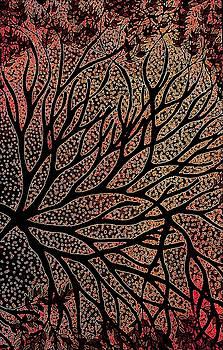 Autumn by Amanda Copenhaver