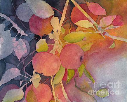 Autumn Apples by Conni Schaftenaar