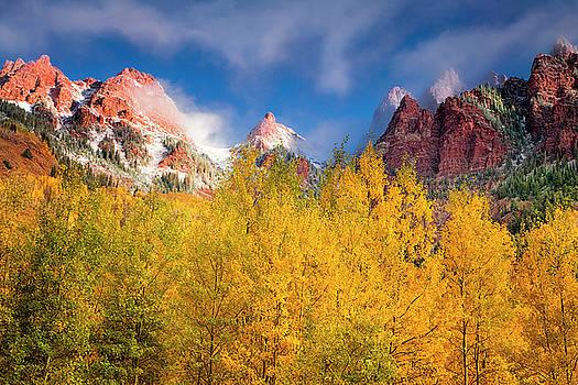 Autumn Aspens by Andrew Soundarajan