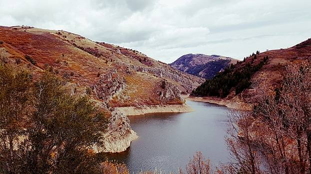 Autumn At Causey Reservoir  by Jason Ross