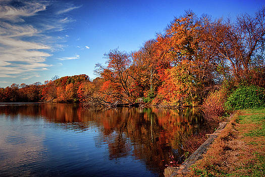 Autumn at Coursey Pond In Frederica by Bill Swartwout