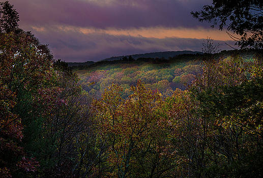 Autumn at Dawn on the Mountain by Linda Rasch