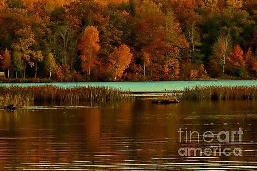 Matthew Winn - Autumn at Foote Pond