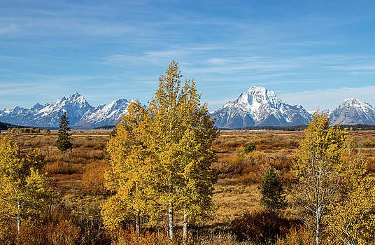 Autumn at Grand Teton National Park by Randy Straka