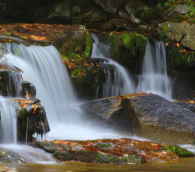 Autumn at Jackson Falls by Suzanne DeGeorge