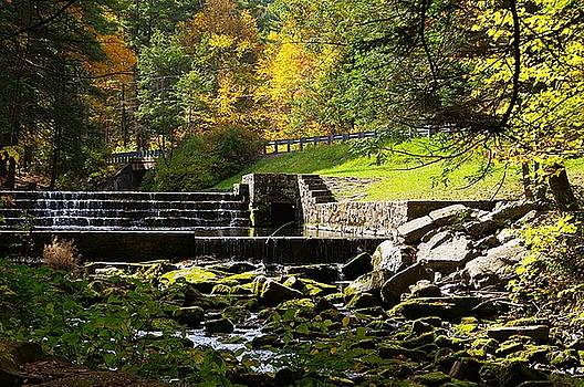 Autumn At Ravensburg Park  by Stephanie Calhoun