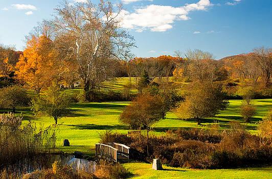 Autumn at Ringwood Manor by Nancy De Flon