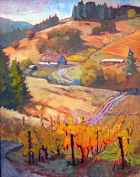 Autumn at Silvan Ridge by Margaret  Plumb
