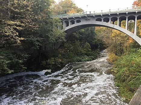 Autumn at the Bridge by Heidi Moss