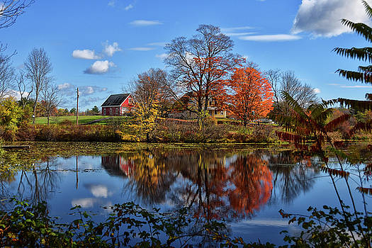 Autumn At The Farm by Tricia Marchlik