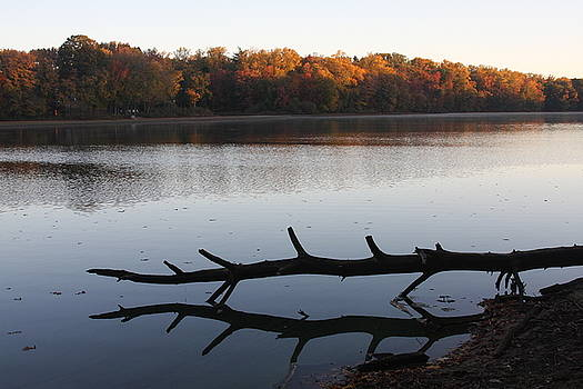 Autumn at the Lake by Vadim Levin