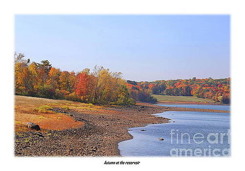 Autumn at the reservoir edge by Marcel  J Goetz  Sr
