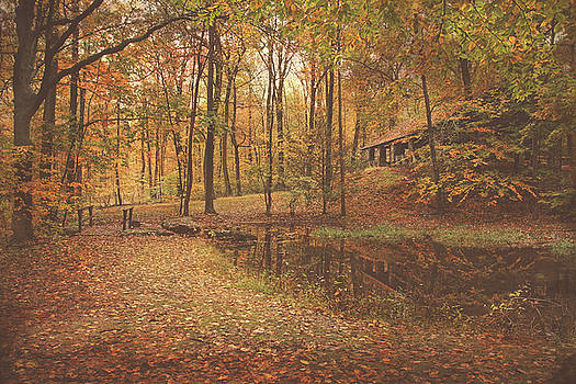 Autumn At Voorhees matte by Pat Abbott