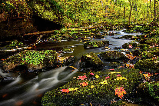 Autumn At Wolf Creek by Gary Harris