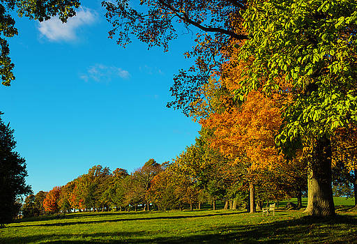 Autumn At World's End by John Forde