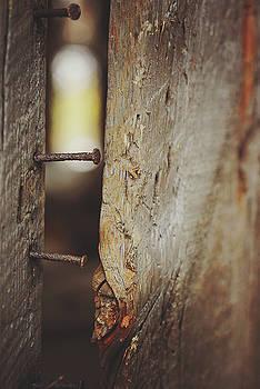 Autumn Barn 4 by Megan Swormstedt