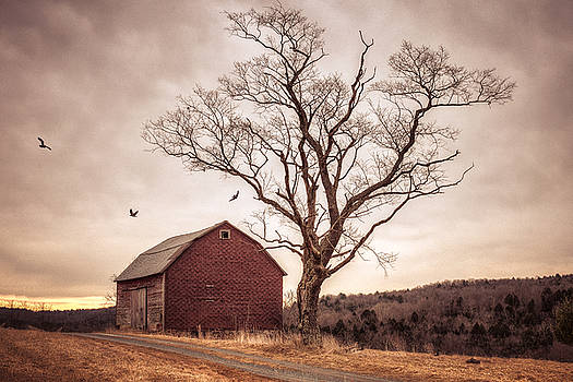 Autumn barn and tree by Gary Heller