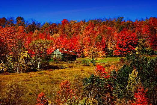 Emily Stauring - Autumn Barn