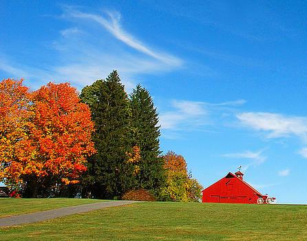 Mark Wiley - Autumn Barn