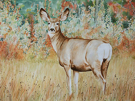 Autumn Beauty- Mule Deer Doe  by Elaine Booth-Kallweit