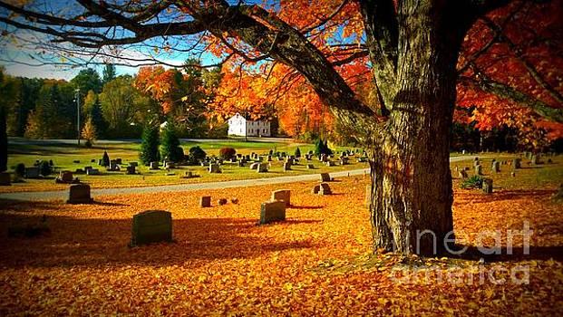 Autumn Beckons  by Eunice Miller