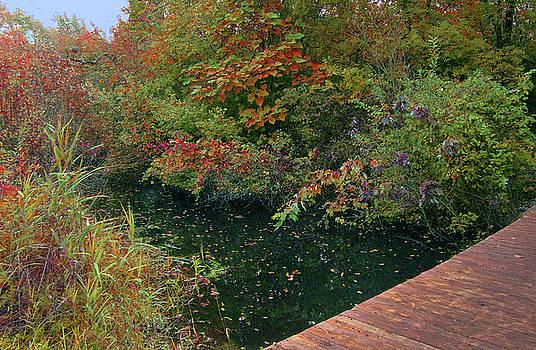 Autumn Beside Emerald Waters by Cedric Hampton