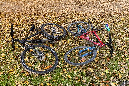 ReDi Fotografie - Autumn Bikes